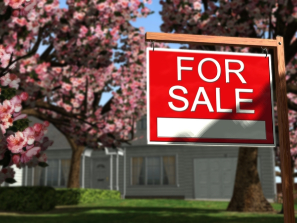 Co- buying a Real Estate